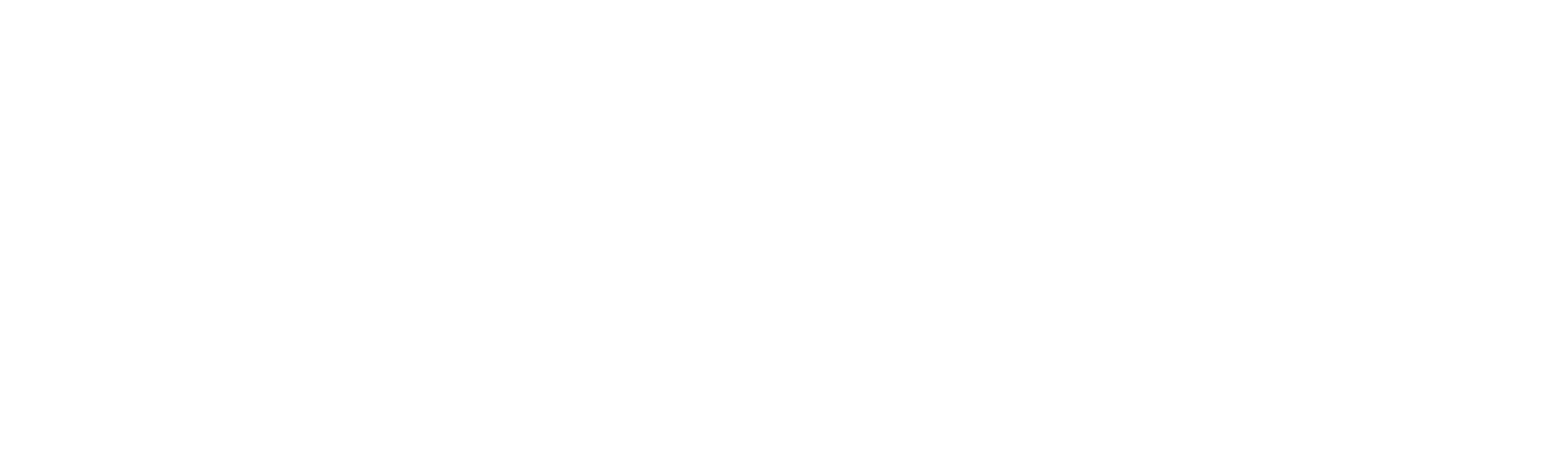 GSA 3 - White